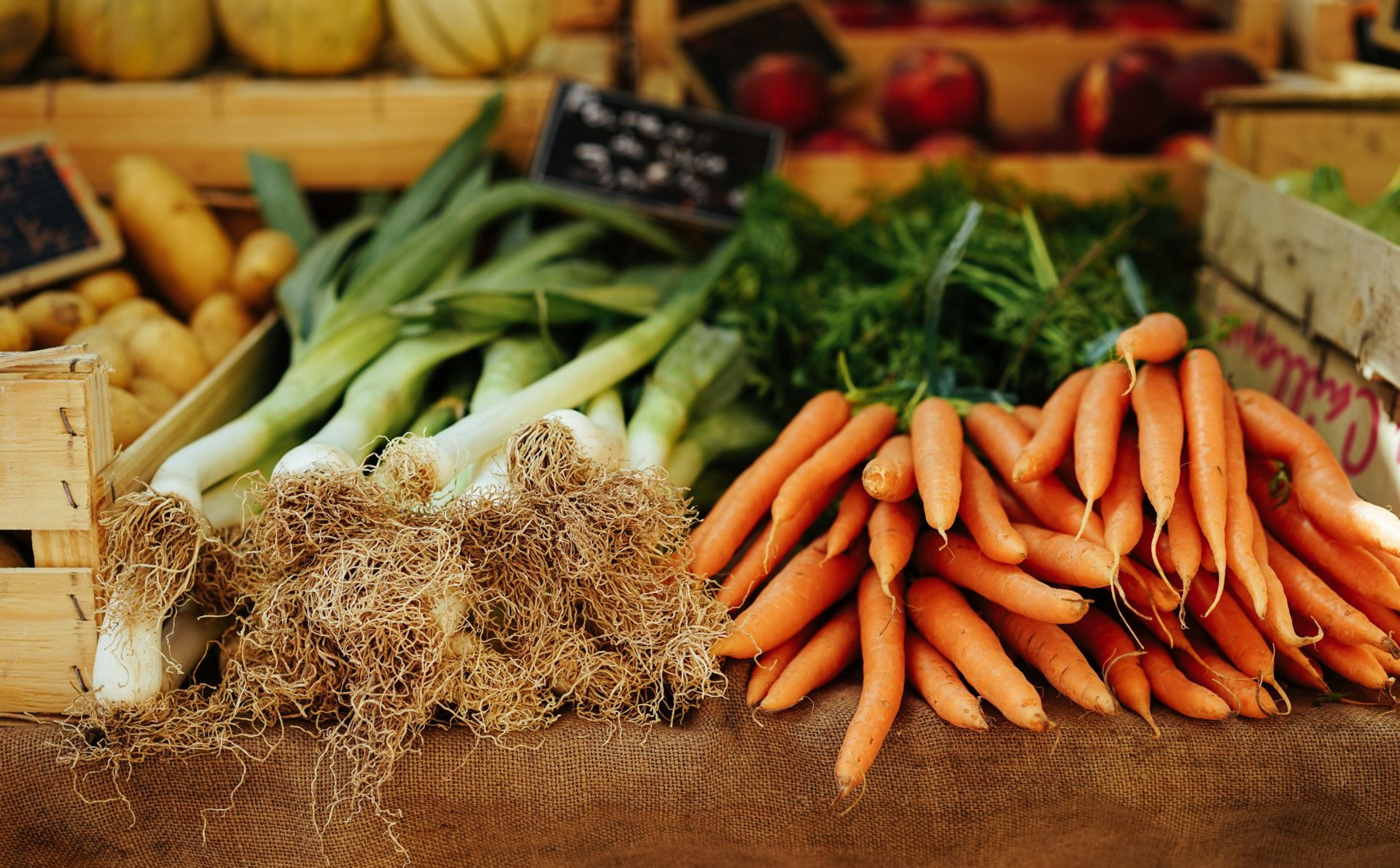 Vegetables with roots