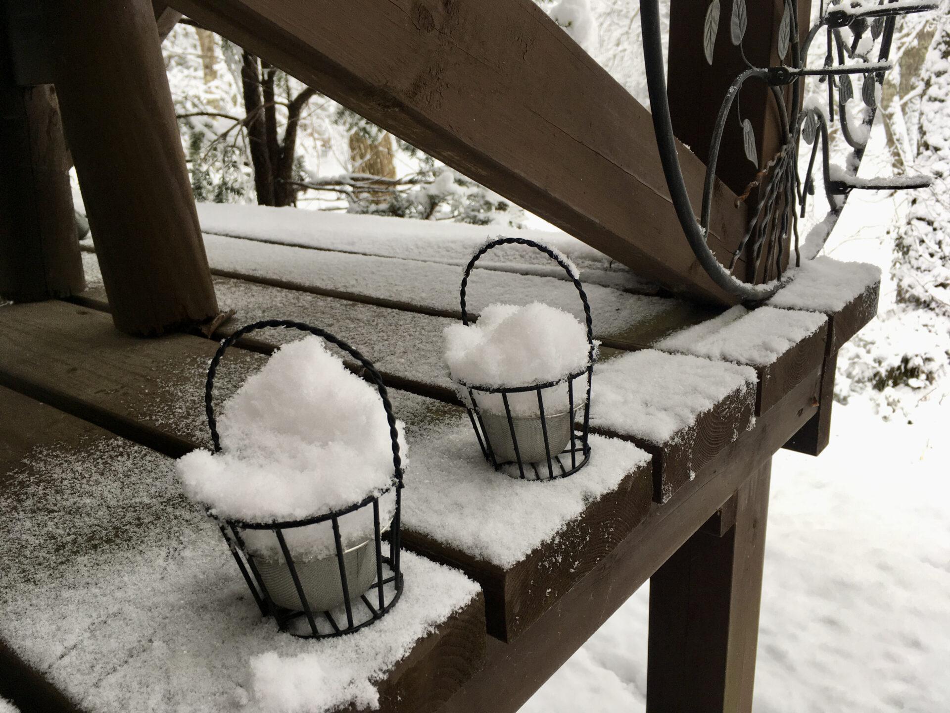軽井沢の野鳥の餌カゴの雪